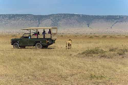 Kidepo Valley National park game drive